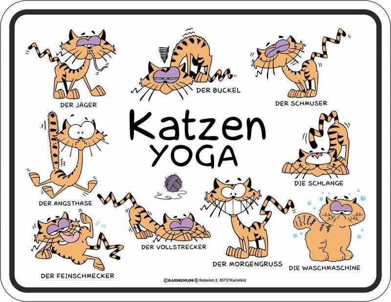 Blechschild Katzen Yoga Huslage24