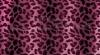 Candlecover CCO- 06 Pink Leo