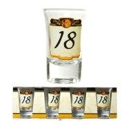 Schnapsglas 18. Geburtstag 4 Stück Schnapsgläser