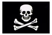 Flagge Capt. Edward - Totenkopf schwarz / weiß