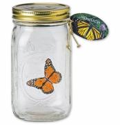 Schmetterling im Glas, fliegender Monarchfalter