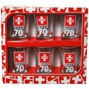 Schnapsglas 70. Geburtstag 6 Stück Medizin Schnapsgläser