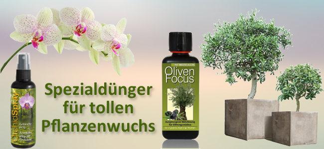 Spezialdünger für Orchideen und Olivenbäume